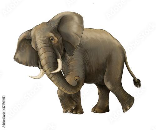 cartoon scene with big elephant on white background safari illustration for children