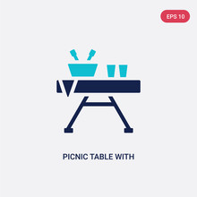 Two Color Picnic Table With Ba...