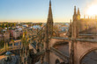 View of the historic center of Seville from the top of the Cathedral of Seville, Seville, Andalucia, Spain