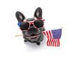 canvas print picture - independence day 4th of july dog