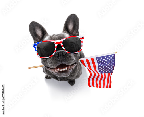Tuinposter Crazy dog independence day 4th of july dog
