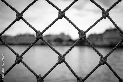 Black and white netted fencing