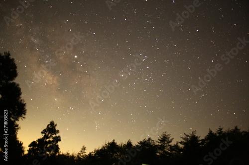 Fototapety, obrazy: Stars