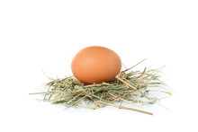 Brown Chicken Egg On Straw Isolated On White Background