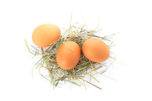 Brown Chicken Eggs On Straw Isolated On White Background, Top View