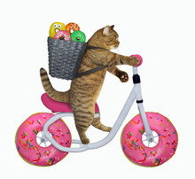 The Cat With A Basket Of Doughnuts Is Riding The Bicycle. The Wheels Look Like A Big Donuts. White Background. Isolated.