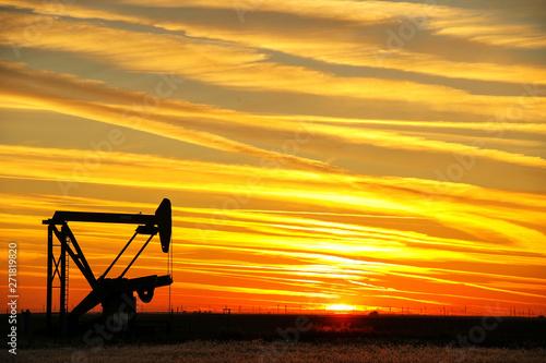 obraz dibond Pumpjack in the oil field at sunset