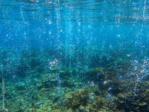 Foto auf Leinwand Blau Jeans Underwater landscape with tropical fish and coral reef. Sparkling oxygen bubbles from seabottom. Marine animal wildlife.