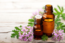 Geranium Essential Oil With Fr...