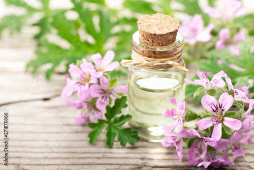 Fototapeta Geranium essential oil with fresh geranium flowers, on the old wooden board obraz