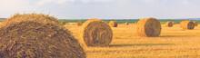 Field After Harvest, Big Round Bales Of Straw