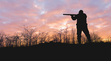 Silhouette Of A Hunter With A Gun In The Reeds Against The Sun, An Ambush For Ducks With Dogs