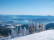 Schweitzer Mountain Frozen Tre...