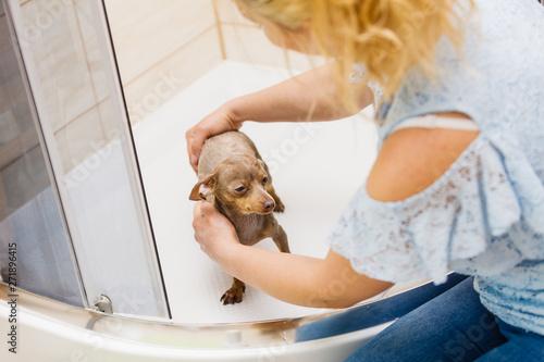 Photo sur Toile Les Textures Woman showering her dog