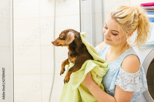 Tableau sur Toile Woman drying dog after bath
