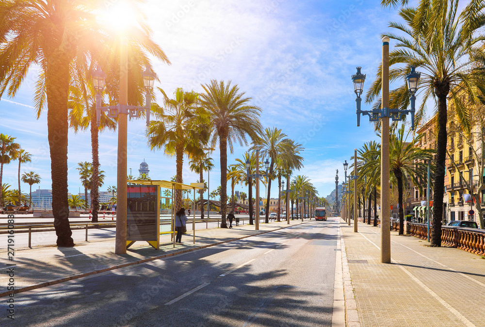 Fototapety, obrazy: Barcelona, Spain. Road for public transport and alley of palm trees. Sunny summer day. Urban street landscape with bus station.