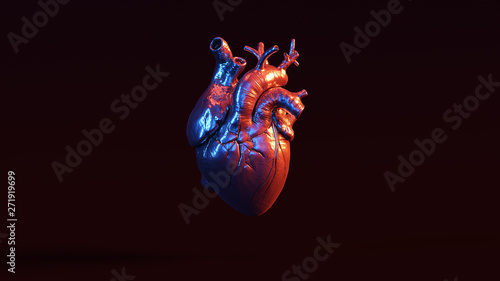 Fotografía  Silver Anatomical Heart with Red Blue Moody 80s lighting Front 3d illustration 3