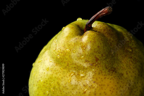 Close up detail of a fresh, organic, ripe, Green Anjou pear with the stem and wa Canvas Print