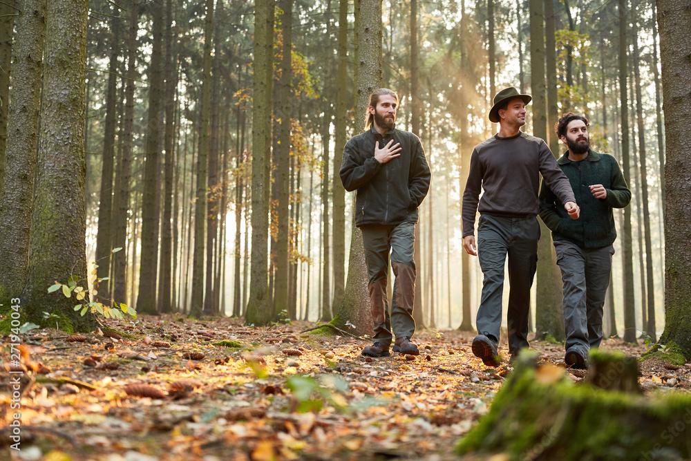 Fototapety, obrazy: Drei Förster gehen zusammen durch Wald