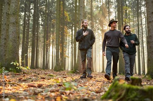Fotomural  Drei Förster gehen zusammen durch Wald