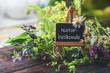 Schild: Naturheilkunde-auf Staffelei mit verschiedenen Heilpflanzen dekoriert