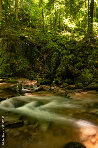 Fototapety, obrazy: Blackforest Waterfall