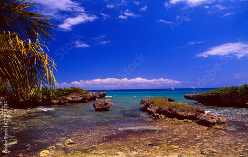 Foto op Plexiglas Donkerblauw Guadeloupe: coastal landscape with rocks and a sailboat at Bas du Fort