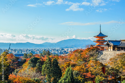 Wall Murals Kyoto A stunning panoramic view of the Kyoto city with the colourful maple tree leaves and the pagoda at the foreground at Kiyomizu-dera.