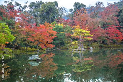 Beautiful autumn foliage garden at Kinkakuji temple in Kyoto, Japan Tableau sur Toile