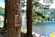 Camp Sign On Tree Next To Alpi...