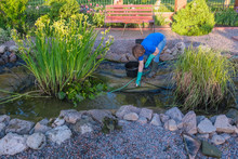 White Middle Aged  Woman Cleans Fish Pond From Slime And Water Plants.