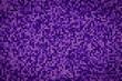 canvas print picture - Deep purple