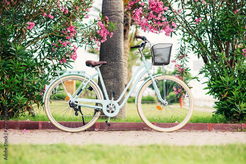 Foto auf Leinwand Fahrrad Women vintage bicycle against green bushes and pink flowers. Stylish retro bicycle with the basket parked on the street.