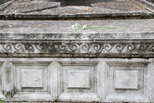 Leopardi's Tomb