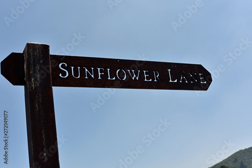 Photo Sunflower Lane Sign