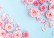 canvas print picture - Flowers composition background. beautiful pale pink roses on blue     background.Top view.Copy space