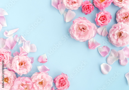Foto op Aluminium Bloemen Flowers composition background. beautiful pale pink roses on blue background.Top view.Copy space