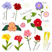 Flower Set 1. Flora Vector Col...