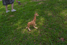 In The Summer Park, There Is A Cute Giraffe Child Plush Toy Standing Quietly On The Sunny Grass.