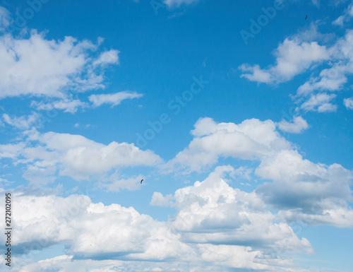 Fototapeta  big white clouds in the blue sky