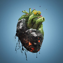 Human Heart With Death And Life