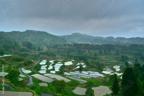 Aluminium Prints Indonesia rice terraces in japan