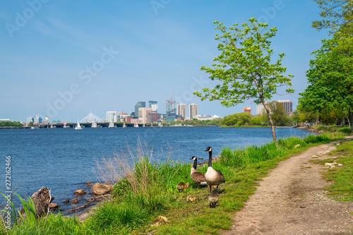 Fotografie, Obraz  Boston