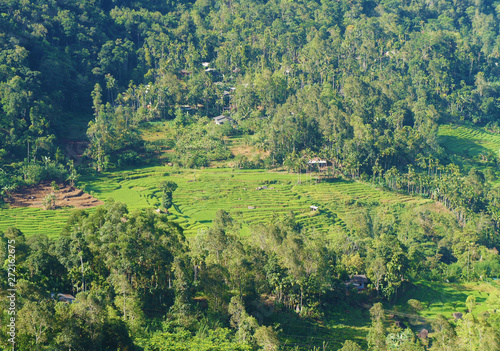 Recess Fitting Zen Mountain green landscape with beautiful views of the tropical island of Sri Lanka in summer.