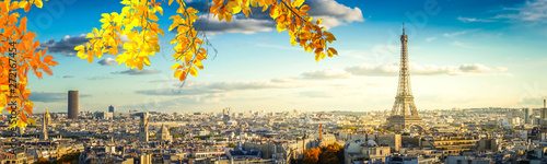Garden Poster Paris eiffel tour and Paris cityscape
