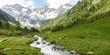 Gerbirgsfluss durch eine grüne Natur in den Alpen