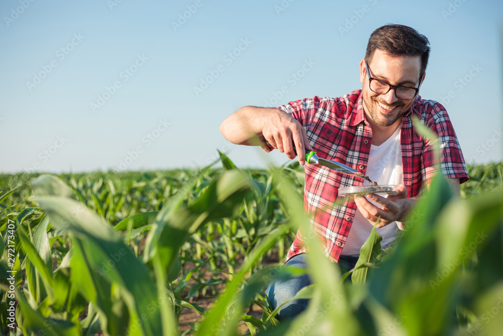 Fototapety, obrazy: Smiling happy young agronomist or farmer wearing red checkered shirt taking and analyzing soil samples on a corn farm. Organic farming and healthy food production