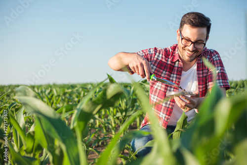 Smiling happy young agronomist or farmer wearing red checkered shirt taking and analyzing soil samples on a corn farm Wallpaper Mural