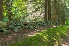 Old Stone Wall Separates Moss And A Forest