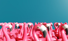 Flamingos Float On Blue Background. 3d Rendering